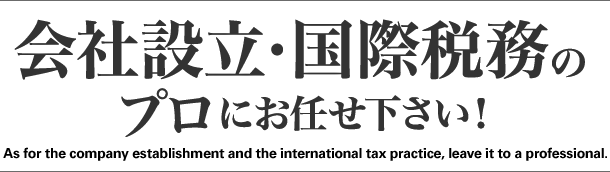 会社設立・国際税務のプロにお任せ下さい(As for the company establishment and the international tax practice, leave it to a professional.)